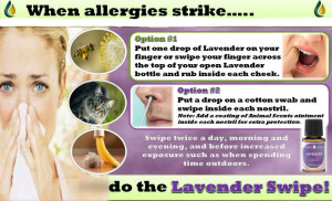 Allergies-and-lavender-edited