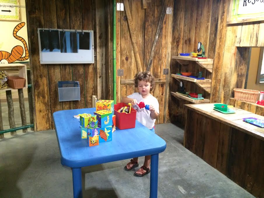 knoxville zoo lab