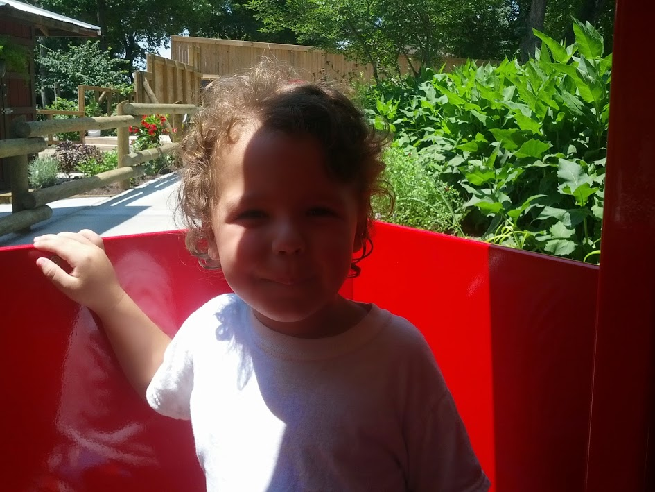 knoxville zoo train