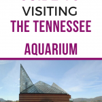 tennessee aquarium guide