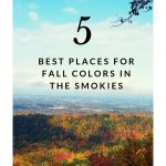 5 best places for fall colors in the smokies